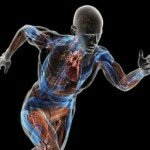Electrical Energy Through Body Movements